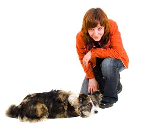 Do not encourage jumping games, or tap your shoulder for your dog to jump up on you, until your dog is completely obedience trained and under control at all times.