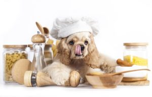 slow-cooker dog food