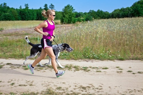 get fit with dog
