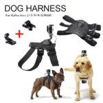 high tech dog gadgets