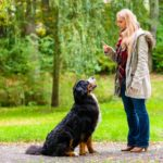 Both your tone and volume are key when communicating with your dog. Always try to use a calm voice when training.