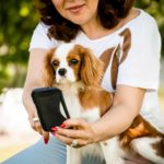 If you love tech why, not If you love tech why, not include Fido in the fun? The right high tech dog gadgets can make your relationship with your pooch even better.