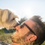 10 reasons dogs lick
