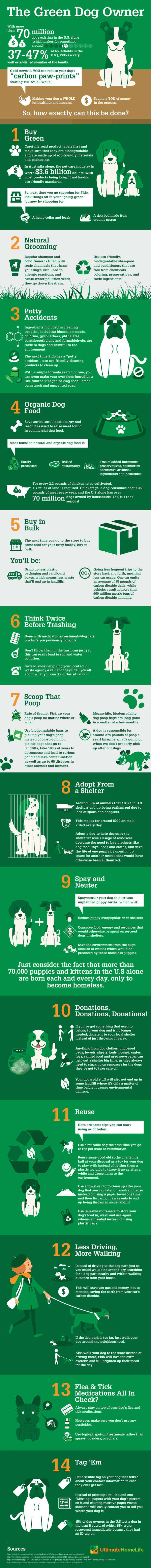 go green with dog