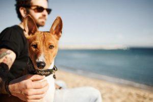 Pick the perfect dog-friendly road trip destination