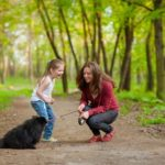 mix obedience training with playtime