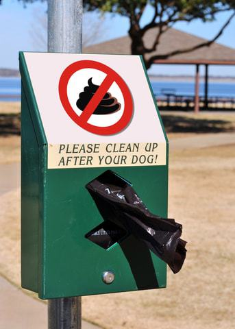 Use pooBagger to easily clean up after your dog.
