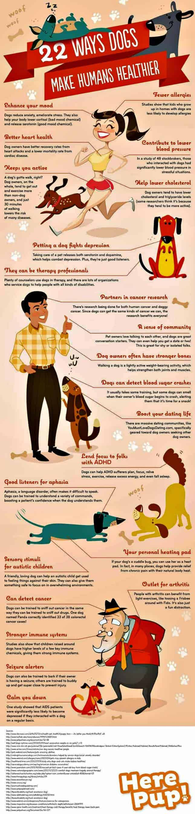 Dogs make owners healthy graphic