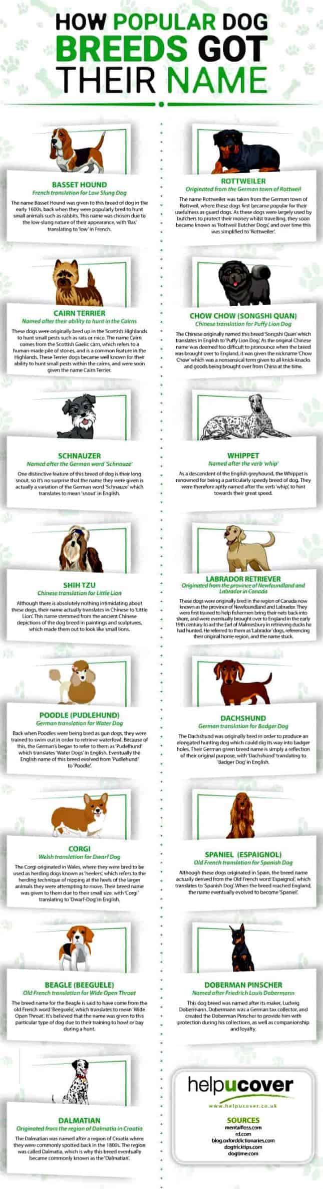 dog breed names