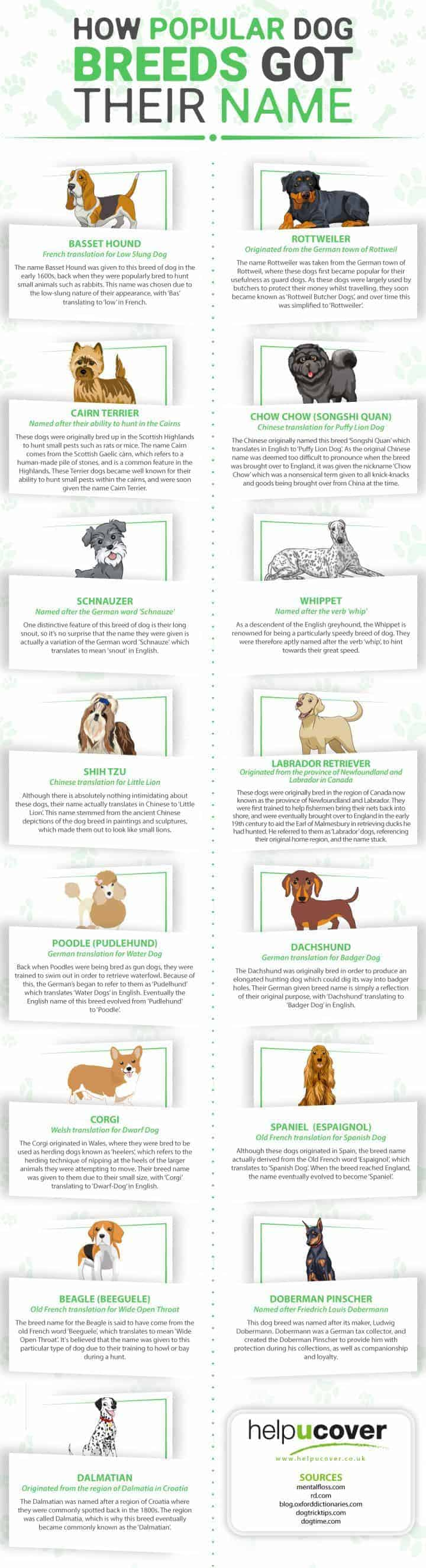 dog breed names