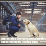 Dog inspiration: No one appreciates ...