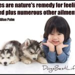 Dog inspiration: Puppies are nature's remedy