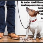 Dog inspiration: Having a dog makes you rich