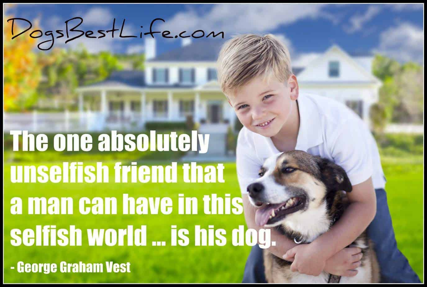dog unselfish friend