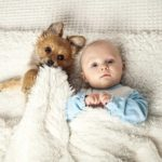 Babies and puppies: Safely build an early bond