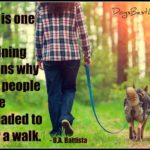 Dog inspiration:  A dog is one of the remaining reasons to persuade people to go for a walk
