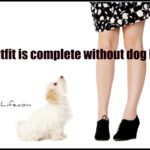Dog inspiration: No outfit is complete without dog hair