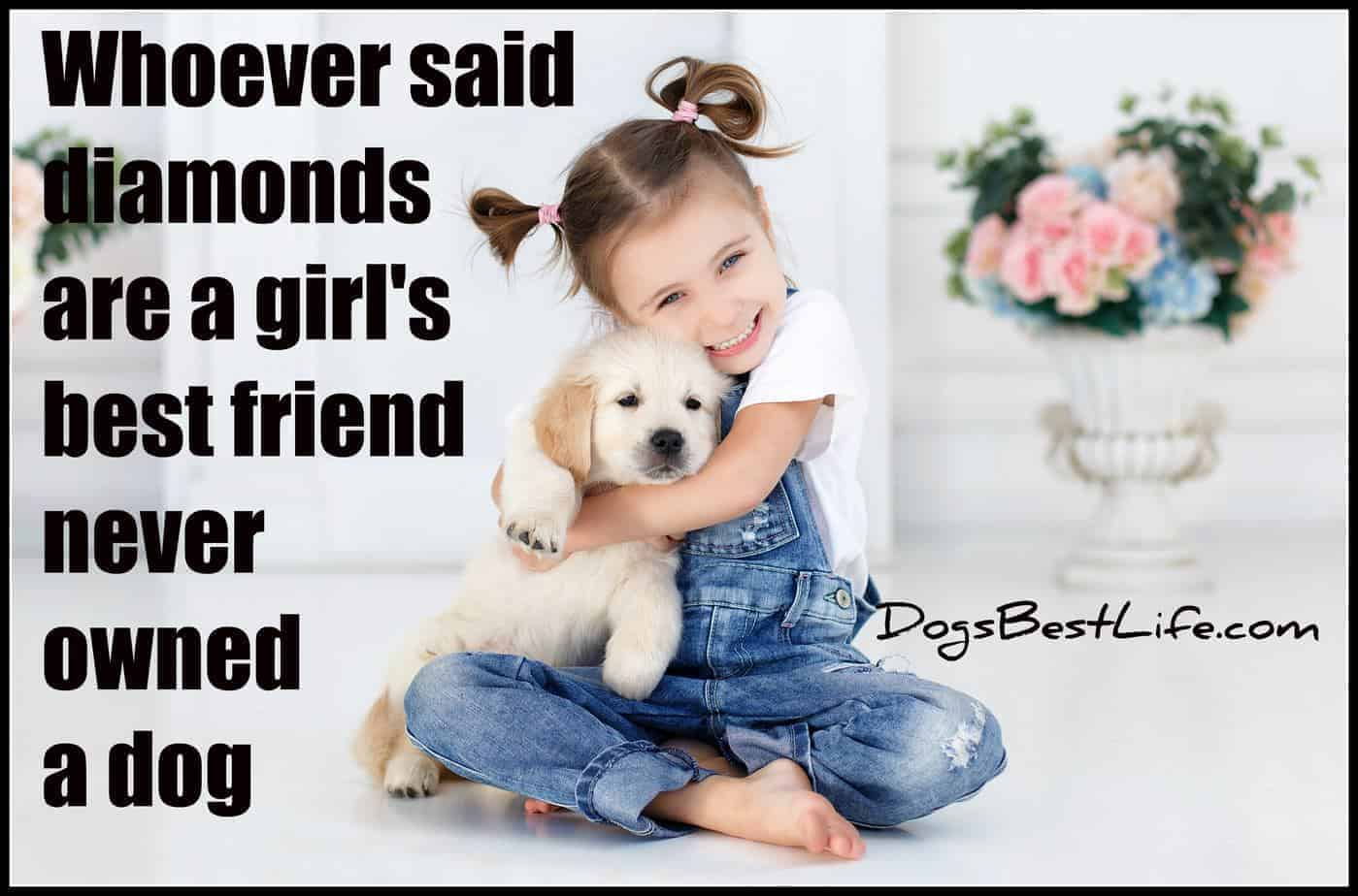whoever said diamonds are a girl's best friend never have a dog