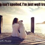 Dog inspiration: My dog isn't spoiled, I'm just well trained
