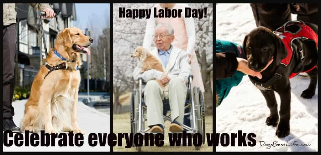 Celebrate everyone who wors