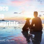 peace, love, pawprints