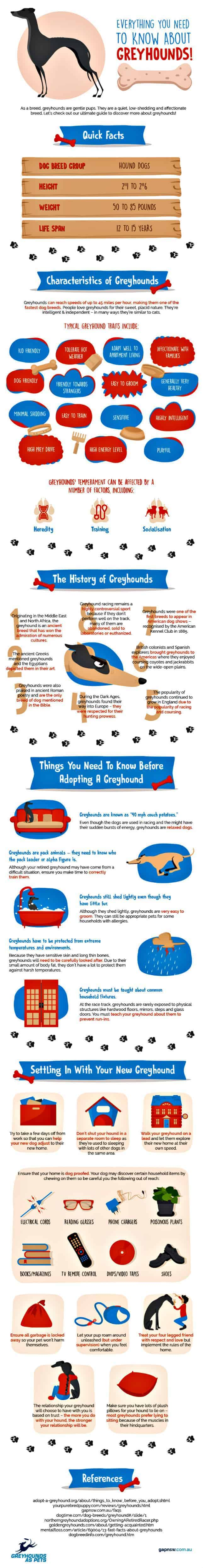 Greyhound graphic