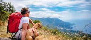 Dogs provide emotional support and help people with mental health problems.