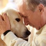 assess dog age