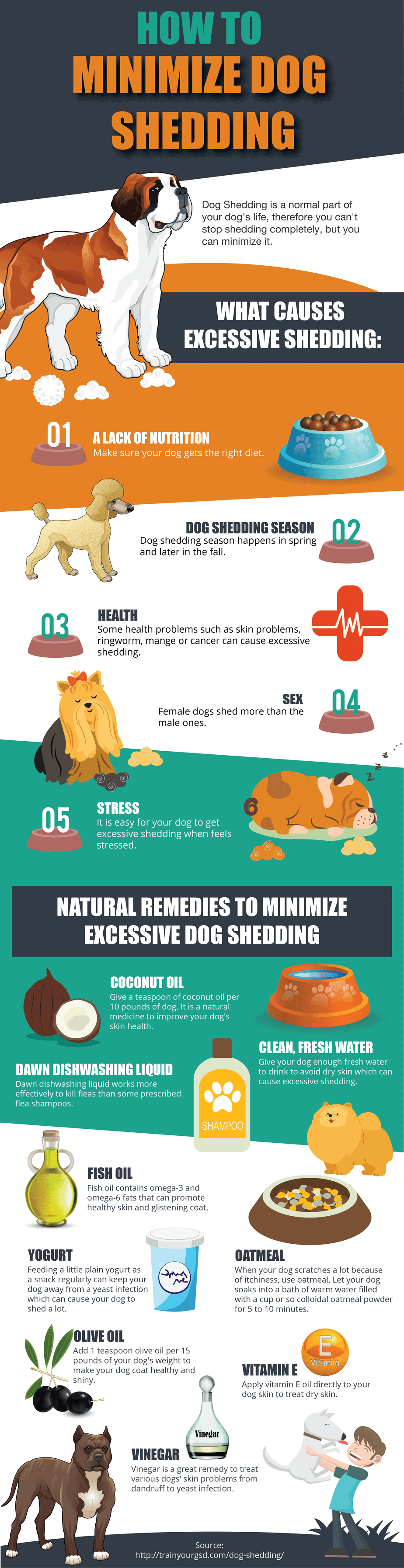 graphic details how to minimize dog shedding