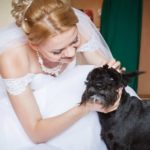 Make your dog part of your wedding day