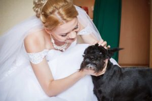 include dog in your wedding
