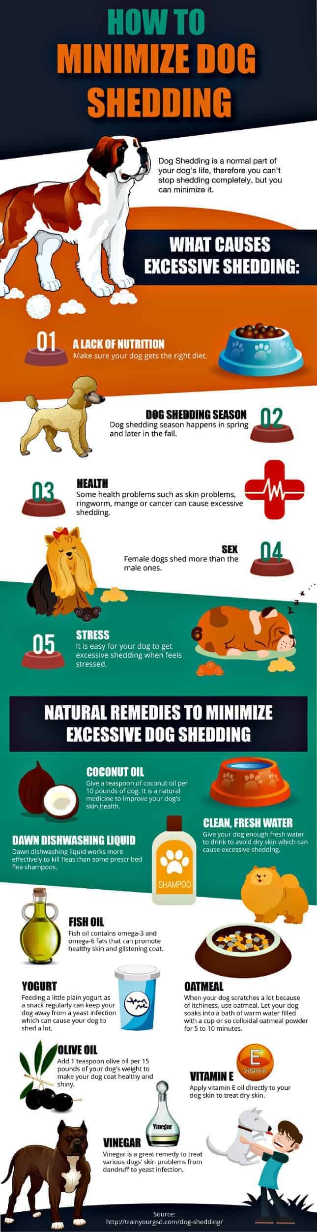 Minimize dog shedding graphic
