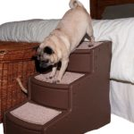 Use pet stairs to help dogs who can't jump