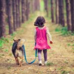 back to school tips for dogs