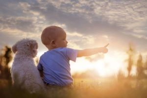 Baby sits with dog. Studies show having pets decreases a child's risk of developing certain allergies. That's an example of how dogs provide health benefits for children.