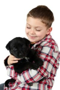 Boy holds black Labrador puppy. The love and acceptance dogs provide help children learn how to develop stronger relationships. That's one way dogs provide health benefits to children.
