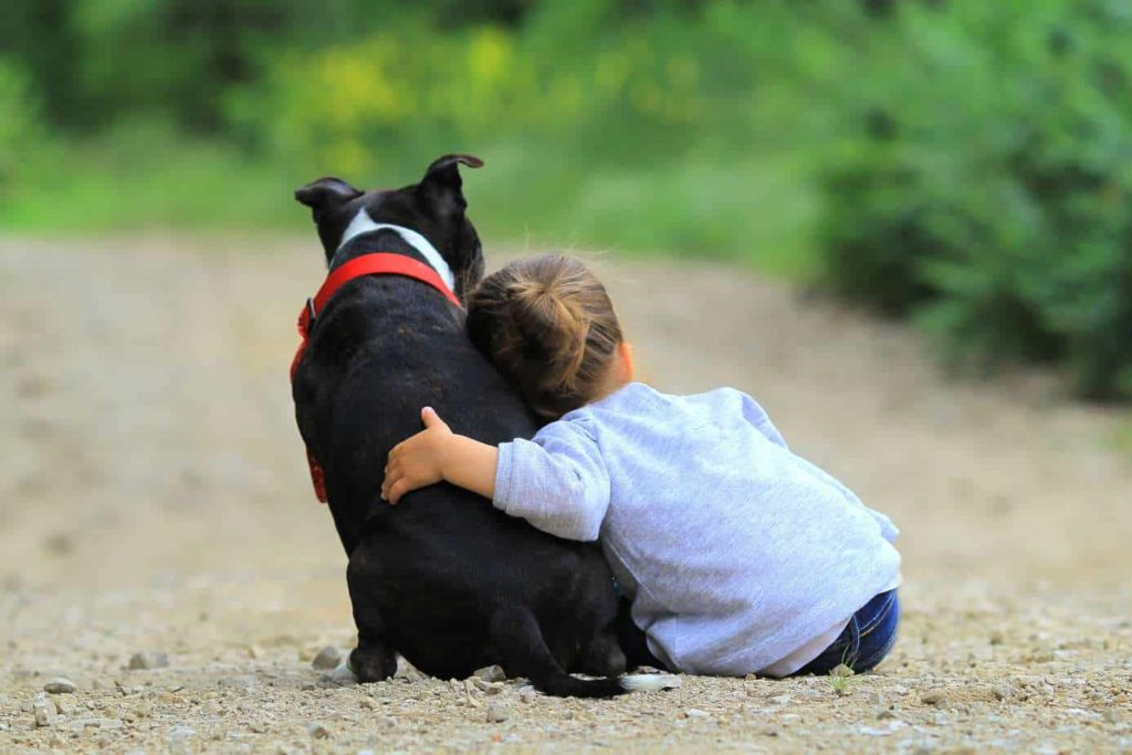 Girl cuddles with dog. dogs provide health benefits for children. That's one of the ways dogs provide health benefits for children.