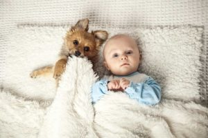 Science says sleep with your dog. Dog and baby snuggle under a fluffy white blanket.