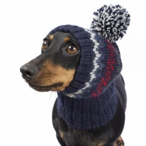 Shop smart for your dog buying a handmade Peruvian hat from Alqo Wasi.