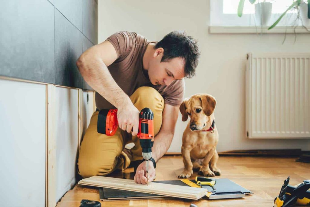 Keep your dog safe during home renovations by keeping him a quiet part of the house so he stays calm.