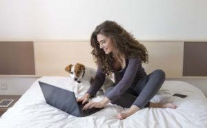 Attractive woman sits on bed with a Jack Russell terrier using a computer to write a pet resume.