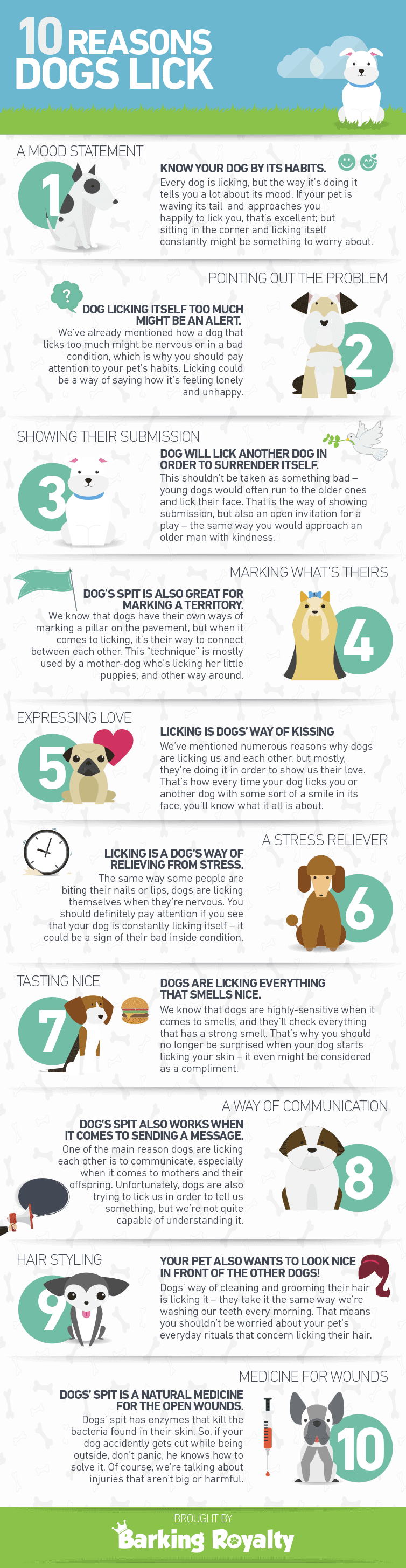 graphic 10 reasons dogs lick