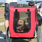 Biking with your dog is fun. Use our tips to plan a long-term cycle touring with your pet to make sure your trip is fun and cozy.