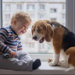Baby and beagle sit in apartment window. Choose the right dogs for apartment living.