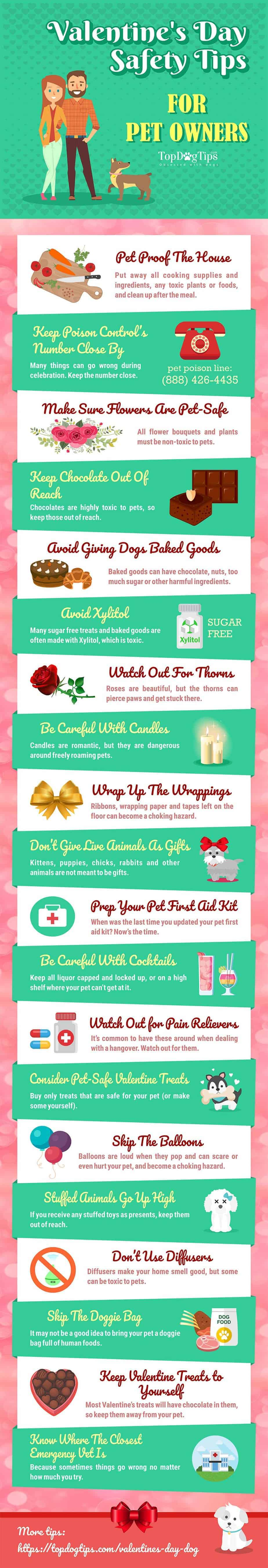 Valentine's Day dog safety tips graphic