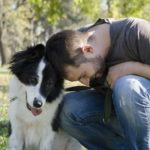 Msn cuddles with border collie. When you re-home dogs, help them adjust by incorporating old habits in their new routines.