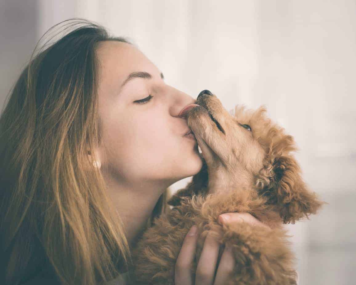 Woman kisses miniature poodle. The 2018 General Social Survey shows dog owners are twice as happy as cat owners.