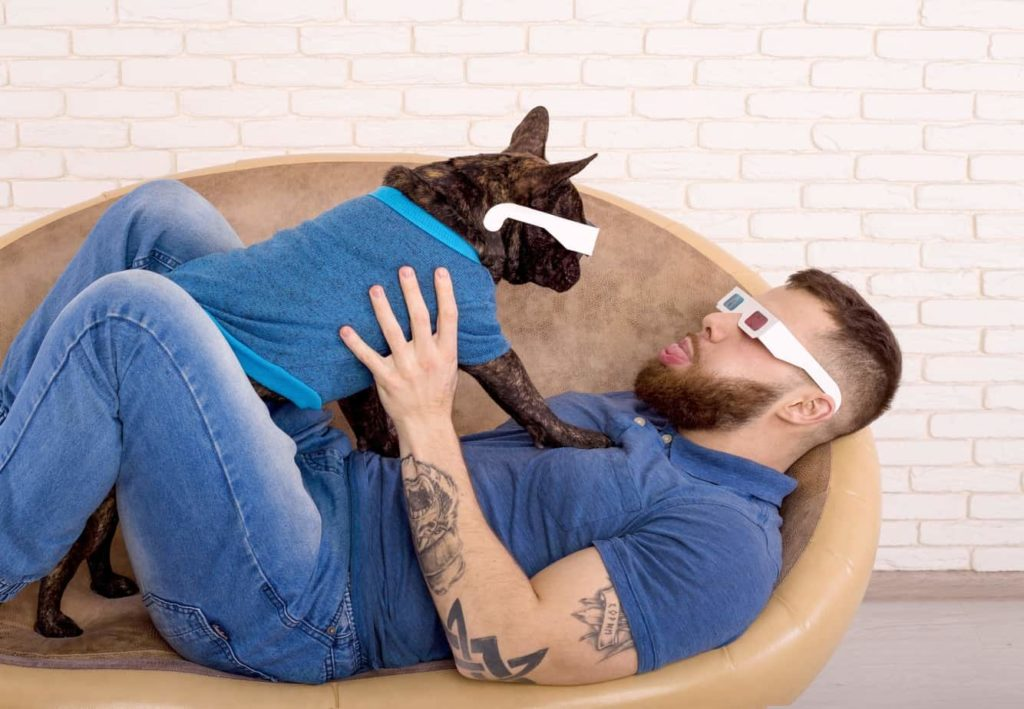 Man plays with French Bulldog. Both are wearing 3-D glasses. Dogs learn to imitate their owners' personality traits and behavior.