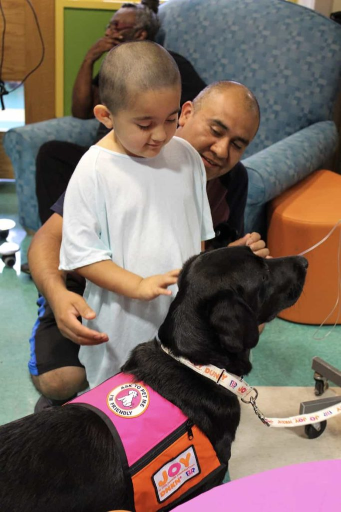Young boy interacts with Cooper a member of the Dogs of Joy program, which places therapy dogs at pediatric hospitals.