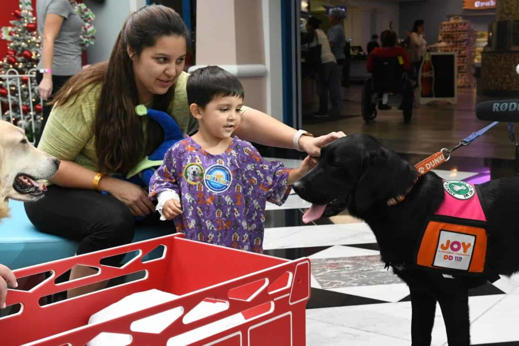 A young boy pets Cooper, a black Labrador retrieve, that is part of the Dogs for Joy program, which places a therapy dog at a pediatric hospital.
